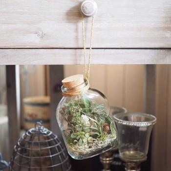 ドライフラワーをボトルに入れて飾るのも趣があります。季節ごとに作っていけば、毎年の思い出にもなりそうですね。
