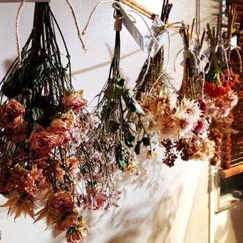ドライフラワーの作り方を調べて見たところ、 ・自然乾燥 ・シリカゲルを使う方法 ・グリセリンを使う方法 など、いくつか方法があるようです。  筆者は壁から吊るして自然乾燥でドライフラワー作りに挑戦したことがありますが、自然乾燥でも十分綺麗に残しておくことができます。ただ、乾燥した後の花や実はとても脆く、ポロポロと崩れてしまうものがあったので、 ・吊るした下に花や実が落ちても大丈夫なようにしておく(新聞紙を引くなど) ・完成した後の保存場所(大きめの箱など)を、あらかじめ準備しておくのがおすすめです。