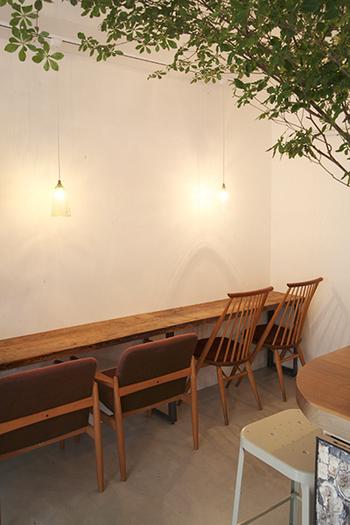 真っ白いコンクリートの壁に電球の影が美しく映えています。すっきりとした空間にグリーンがプラスされ、癒されますね。