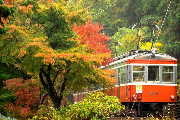 まず箱根湯本で紅葉を楽しみたいのであれば、交通の拠点である箱根湯本駅に行くのがおすすめ!箱根湯本駅は山々に囲まれた場所にある駅で、山一面に広がる紅葉を楽しむことができますよ。