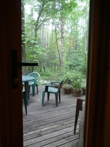 店内にはテーブル席とカウンター席があるほか、森の空気を満喫できるテラス席もあります。