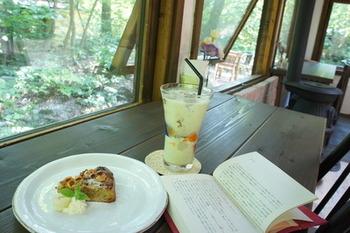 こちらはナッツタルトとアボカドジュース。森を眺めながらゆったりとした時間を過ごすことができます。