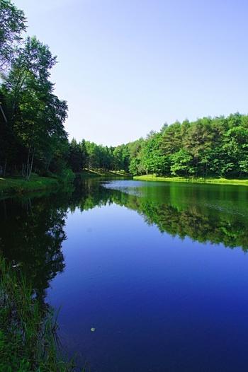 コテージ前をゆったりと流れる川をただただ見つめる、贅沢な時間。