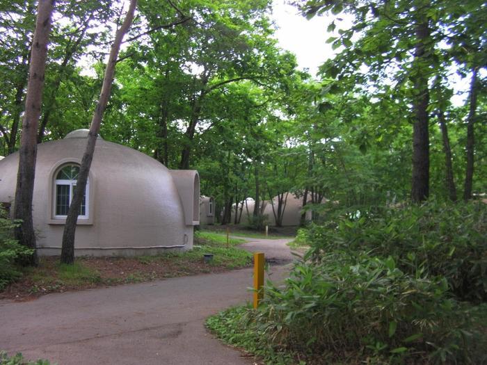 森の中にこつ然と現れる、半球体のユニークなドーム型コテージ。
