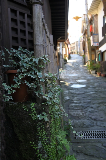 湯平温泉の歴史は、鎌倉時代にまで遡ります。