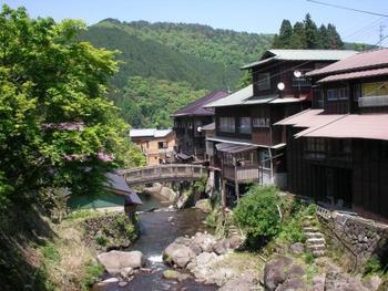 ゆるやかな花合野川沿いに、約20件程度の旅館が軒を連ねている温泉街です。