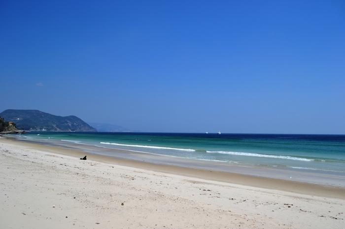 南伊豆を代表する「白浜」。  その名の通り白い砂浜。そして蒼い海。