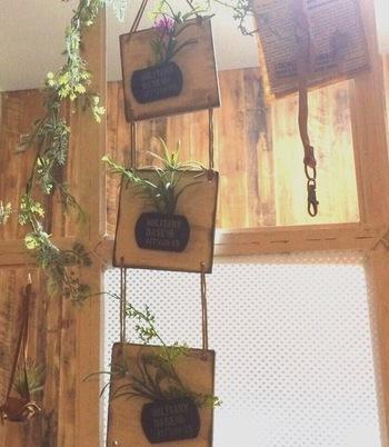 インテリアに使う、観葉植物やエアープランツ。でも、「生花は、面倒で苦手なの……」な方も、コレならきっと大丈夫です!