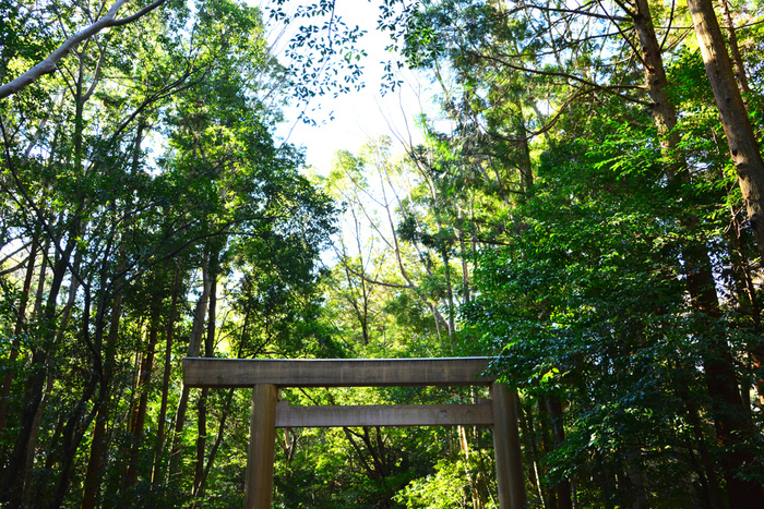 昨年、式年遷宮を迎えたばかりの伊勢神宮。 伊勢には、毎月一日に神宮へお参りする「朔日(ついたち)参り」という風習があります。
