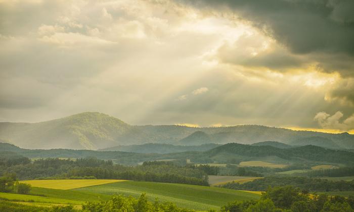 これぞまさしく北海道!!といっても過言ではない景色が美瑛町で楽しめます。 このような景観は農業を営むことにより作られ、農業景観と呼ばれています。美瑛町は町全体で農業が行われており、北海道の代表格といえる景観が楽しめます。絵に描いたような景観の中にいると、時間がとてもゆったりとしたものに感じられるでしょう。