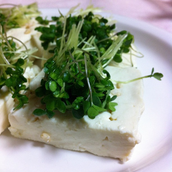 """塩麴で豆腐がチーズのように!驚きの""""塩麹豆腐""""を作ってみよ♪"""