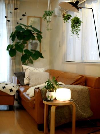 インテリアグリーンいっぱいのリビングの風景です。テーブルや床に置くだけでなく、天井からハンギングするアイデアも◎さらに、アロマデュフュザーで、ゆったりとくつろげる癒しの空間を演出して。