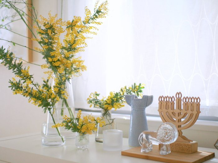 春を告げる花「ミモザ」は、暖かな陽射しに照らされて気持ち良さそう。複数の花瓶を使って高さに変化を付けることで、空間に動きが生まれます。