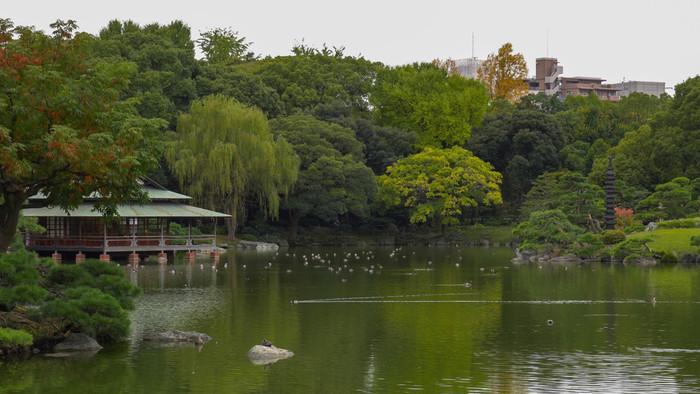 都営大江戸線・東京メトロ半蔵門線の清澄白河駅から徒歩3分。江東区清澄にある「清澄庭園」(きよすみていえん)は、東京都の指定名勝にも選ばれている庭園です。大きな池を中心に、園内には歴史的な建造物や名石などが配置されています。