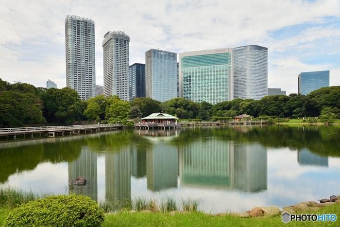 「浜離宮恩賜庭園」(はまりきゅうおんしていえん)は、都営大江戸線・ゆりかもめの汐留駅から徒歩7分の場所にある日本庭園。人気スポットである「潮入の池」は東京湾の海水を引いて作られたもので、潮の満ち引きに合わせて水門を開閉し、水の量を調整しています。