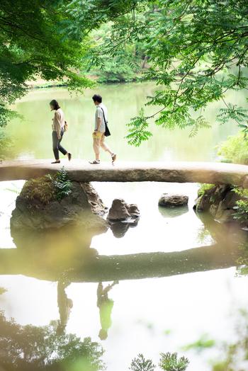 二枚の大岩で作られた「渡月橋」(とげつきょう)は、景色を眺めながら渡るのにぴったりの場所。また、水面に橋が映る姿も美しく、絶好の撮影スポットでもあります。橋を渡ると、庭園を一望できる「藤代峠」(ふじしろとうげ)に辿り着きますよ☆