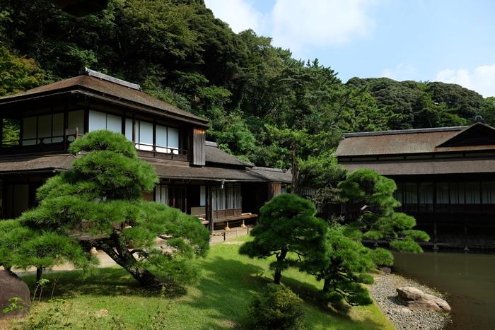 三渓園とは、絹糸貿易で富を築いた原三渓が造園した日本庭園です。17.5ヘクタールの敷地内には、全国各地から集めた重要文化財を含む歴史的建造物が保存されています。四季折々で美しい景色が広がる三渓園は、国の名勝にも指定されています。