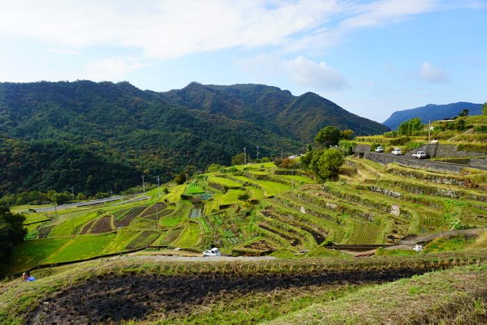 「中山千枚田」は、映画「八日目の蝉」で有名になった棚田です。 「日本棚田百選」の一つですが、棚田を潤す水もまた「日本名水百選」の一つに選ばれています。