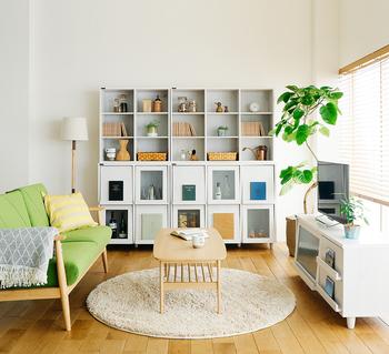 お部屋の雰囲気をガラッと変えたい場合は、シンボルになる大きめのインテリアグリーンがおすすめ!日当たりの良い窓際に置いて、ぐんぐんと育つ姿に活力をもらえそう。