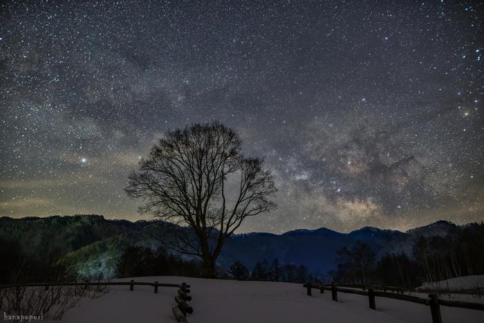 まさに満天の星。都会の喧騒疲れを癒しに、嫌なことを忘れに、あるいは素敵な思い出づくりに、夜空を見上げてみませんか?