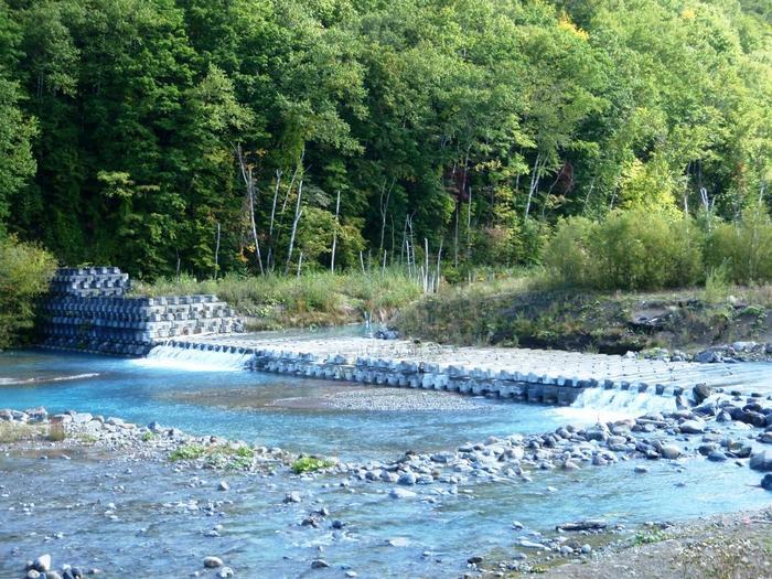こちらの美瑛川も「ブルーリバー」と呼ばれており、こんなに見事な青く美しい光景を見せてくれます。