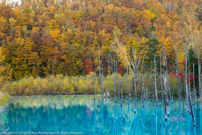 この奇跡のように美しい光景を一目見ようと、季節を問わず多くの観光客で賑わっています。