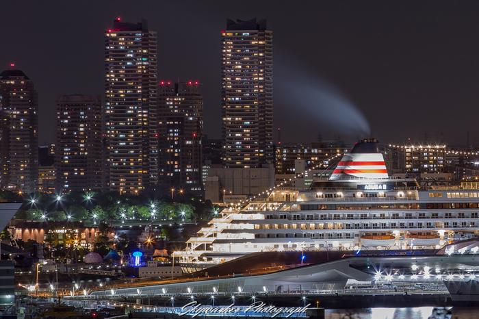 クリスマスクルーズも「グレンミラーオーケストラクルーズ」や「JAZZ ON ASUKAⅡ」「横浜・名古屋ワンナイトクルーズ」などさまざまに用意されています。