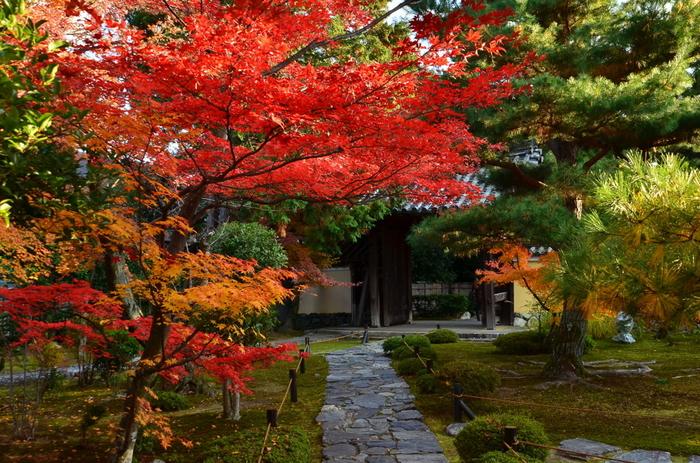 宿坊とは、お寺にある宿泊施設のことを言います。 最近では、その形態も多様化しており、数日間の修業のようなものから、精進料理や朝のお勤め体験だけできるもの、はたまたホテルのようなものまであります。
