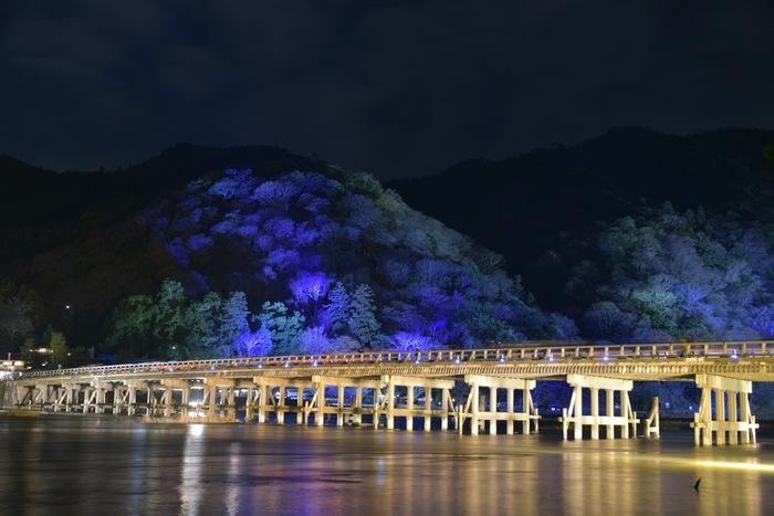 竹林と共に有名な渡月橋。昼間の渡月橋も素敵ですが、夜にライトアップされた渡月橋も風情があります。 食後のお散歩に最適ですよ。