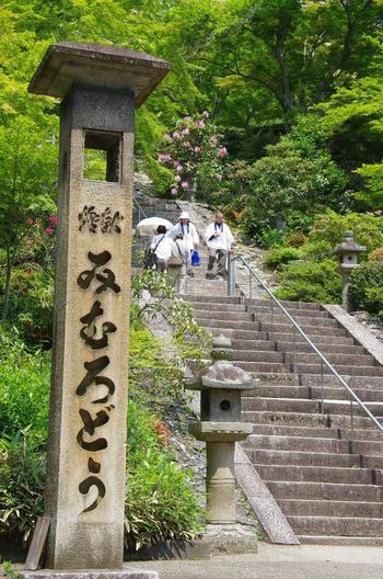 【*「西国観音霊場三十三所」は、日本最古の巡礼路。  和歌山から岐阜まで近畿圏に伸びている巡礼路の総距離は1000km。霊場の三分の一が京都に集中していることから、巡礼文化、観音信仰文化が全国に広まったとされる歴史ある巡礼路です。  2017年には草創1300年を迎え、西国三十三所草創1300年記念「特別印」が授与されています。詳細は以下の公式サイトへ。 (画像は「三室戸寺」の本堂へと続く石階段。巡礼者は、海外からの外国人も多い。)】
