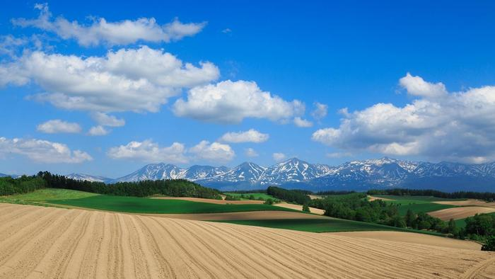 北海道上川郡のほぼ中央に位置する美瑛。