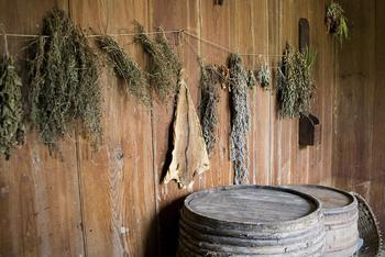 ドライにして使うと、長期保存ができて便利です。特にフレッシュハーブが手に入りにくくなる冬に備えて、秋にまとめて作っておくといいですよ。こんな風に逆さに吊るして、2週間ほどすればドライになります。