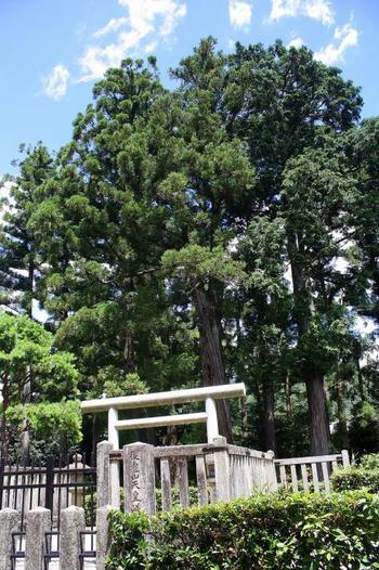 二尊院近くには、後亀山天皇が眠る嵯峨小倉陵(さがのおぐらのみささぎ)があります。