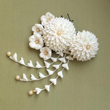 大輪の白菊が華やか且つ清楚で美しい。