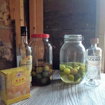 プラム酒。お酒を自分の好きなものに変えて、フルーツの風味をプラスする感じで作るのもいいですね。
