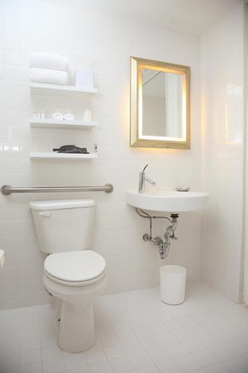 たかがトイレ、されどトイレのインテリア。毎日使うところだからこそ、素敵なインテリアで快適な時間を過ごしたいですね。