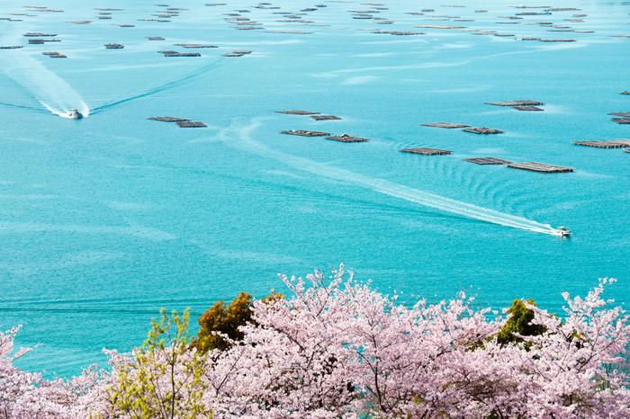 これから旬を迎える「牡蠣」の生産量日本一は「広島県」。養殖が盛んな広島湾は、瀬戸内海の島々に囲まれ、潮の流れも穏やか。牡蠣が美味しくなるための条件がそろった場所なのです。 また広島かきは、美味しいだけでなく、全国に安心安全な牡蠣を届けるために広島県の独自の条例のもと作られているんです。
