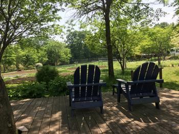 天気のいい日はテラス席もおすすめ。ペット可だから、家族みんなで過ごせるのも嬉しいですね。