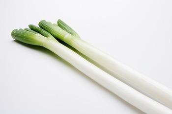 昔から、体を温め疲労回復する薬用植物として重宝されてきた長ネギ。長ネギの旬は11~2月。選ぶ際のポイントは、張りがあり、白と青の境目がはっきりしているものだそう。長ねぎを美味しく食べて、寒い季節を乗り切りましょう!