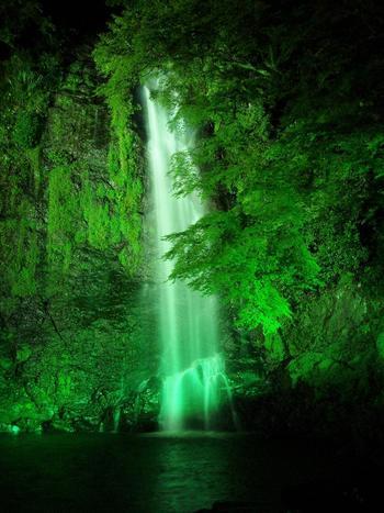 ライトアップした滝も幻想的で美しいですね~。