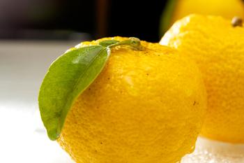 実はこの柚子には、ビタミンCが豊富に含まれています。 ビタミンCには疲労回復や美肌効果、また風邪予防にも役立つ優れもの。 また、ペクチンには整腸作用の他、血中コレステロールを減らし、動脈硬化を予防する効果も期待できます。