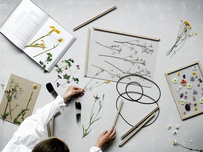 前後のアクリルガラスの2枚、オークの4辺のフレーム部分と、ゴムバンドのみで構成されているこのフレームには、押し花を作るように植物を入れることで、世界で一つのオリジナルのフレームが出来上がります。