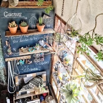 植物を飾った壁を黒板に。本物のサボテンの横にチョークでサボテンを描いた、見ているだけでワクワクしてきちゃうチョークアート♪