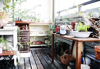 お庭でしかできないと思われがちの、ガーデニング。工夫次第で、ベランダでも楽しむことができます。 キュートな鉢にこだわった植物があれば、ベランダがさらに華やかになります。