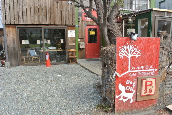 ドッグカフェも併設されているこちらのハルテラスは、子連れにもやさしいカフェとして人気です。