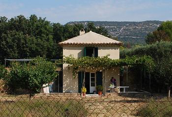 屋根も白で統一した真っ白なタイニーハウス。家と庭の木に一体感があり、周りの緑がよりお家を引き立てています。