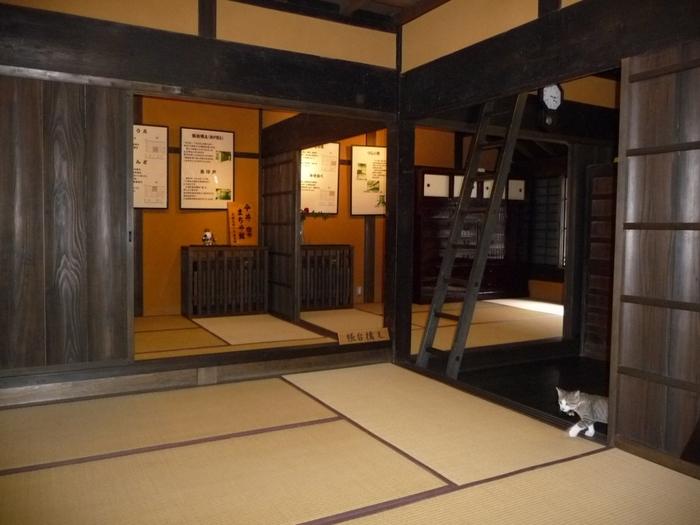 漆喰壁と格子扉が美しい町屋建物に一歩足を踏み入れると、江戸時代中期の風情が漂う空間が広がっています。