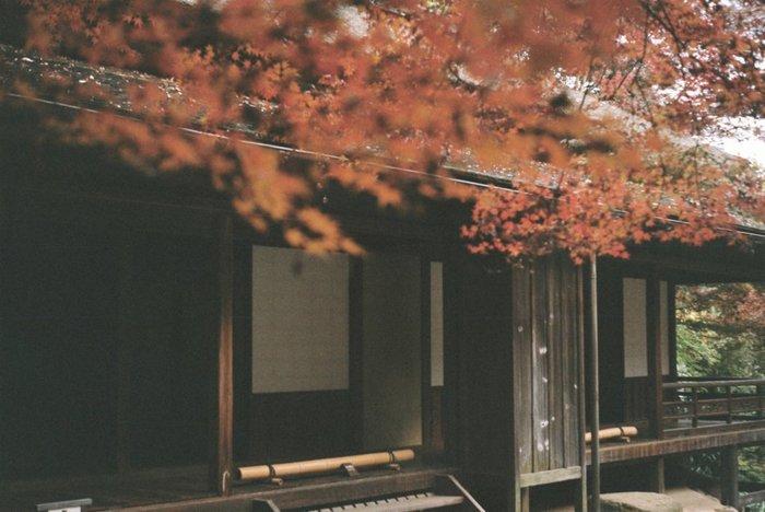 趣を感じさせる、古いお屋敷と紅葉。奥行のある画面から、歴史の深みが伝わってきます。(LeicaDⅢ)