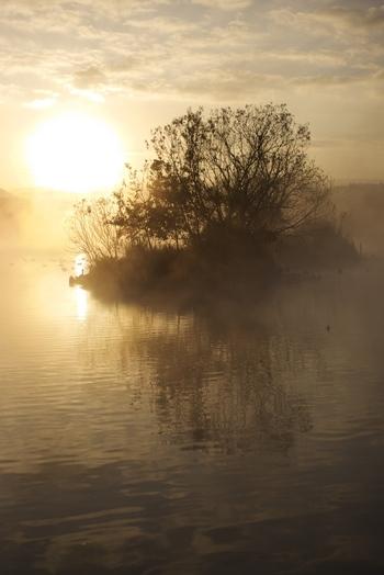 なんでしょうか、この美しさ。湖にひっそりと映し出される木々が、幻想的・・・。(LeicaM)