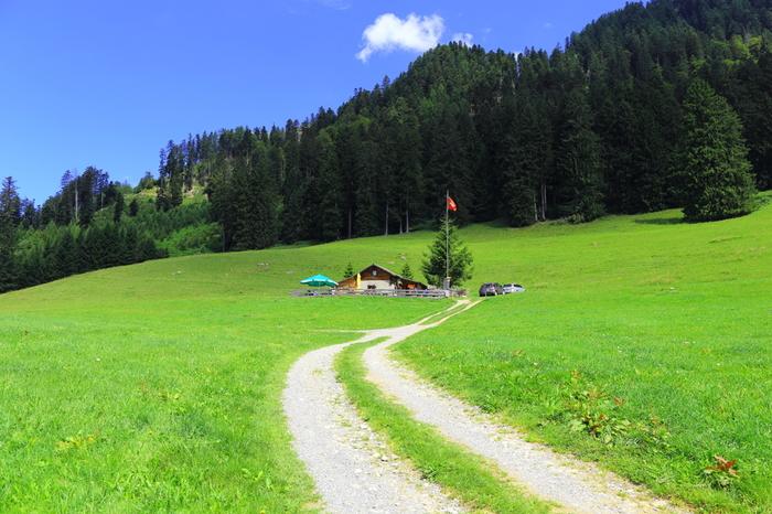 マイエンフェルトから、山道を歩くこと約2時間~3時間程度で到着するハイジヒュッテは、ハイジのおじいさんが住む家のモデルとなった小屋です。抜けるような青空、淡い緑色の草原、周囲に広がる深い森が織りなす景色を眺めていると、まるで自分自身がハイジになったかのような気分を覚えます。